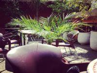 Lire la suite: Salon de thé Beverly H Café Meknes